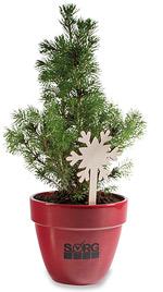Weihnachtsbaum Im Topf Geschmückt.Mini Weihnachtsbäumchen Im Topf